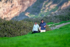 Cat-3089_-2_-3.jpg (Goran Photo) Tags: california melagacove palosverdespeninsula usa unitedstates geo:lat=3378582543 geo:lon=11841812825 geotagged