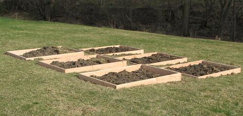 garden beds in