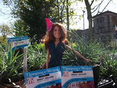Princess Catherine Engagement Doll at a Garden Centre (Princess Catherine Doll) Tags: london toy doll princess kate royal tourist catherine british middleton arklu