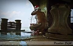 একদা সুখের স্নান (Peculiar Sajib) Tags: nature ferry bath launch প্রকৃতি maowa গোসল