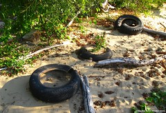 Three in a Row (Jake (Studio 9265)) Tags: park ohio abandoned trash river fossil garbage junk state beds indiana tire falls tires driftwood clarksville