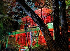 halloween on orchard street (sandcastlematt) Tags: longexposure cambridge house halloween night scary massachusetts web spiderweb somerville clutter davissquare orchardstreet bostonist giantspider universalhub