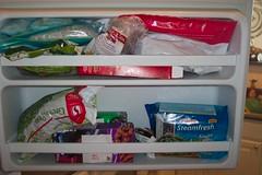 freezer_door