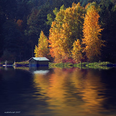 The Boathouse - autumn fall trees tree boathouse vancouver shawnigan orange flood lake reflection dock