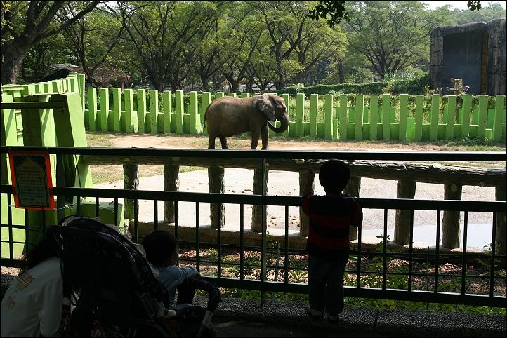 2007國旅卡DAY4(壽山動物園)029