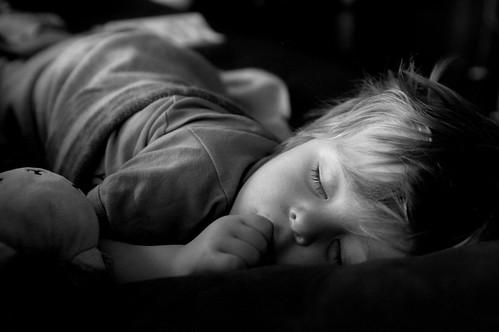 sleeping ollie 1.jpg