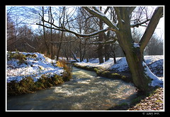 The Luszwka River (Mariusz Petelicki) Tags: winter river poland polska zima hdr rzeka canon400d mariuszpetelicki