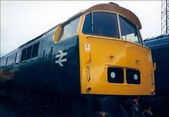 Class 52 D1023 'Western Fusilier' (Stuart Axe) Tags: train diesel rail railway loco trains western 1998 locomotive railways britishrail openday britishrailways toton dieselelectric dieselhydraulic class52 d1023 unlimitedphotos totontmd