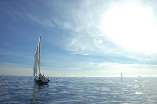 Sailing Venice Beach