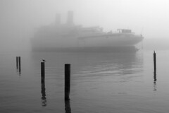 Destination Unknown (Lost America) Tags: fog pilings steamship liner oceanliner ssindependence