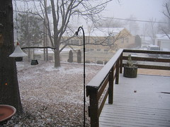 Snow Burst