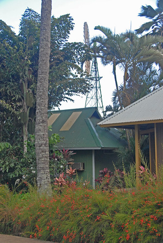 Maui 120