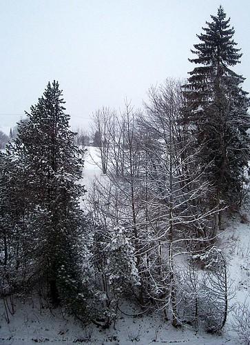 It snowed last night!