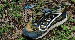 21 Long gone shoe
