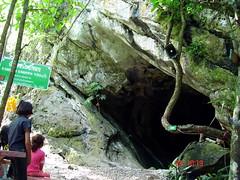 pet cave thailand06