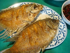 gurame goreng (Satya W) Tags: food fish homemade fried goreng ikan gurame 200808