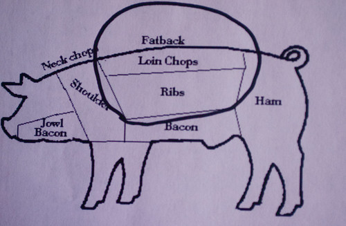 Parts Of Pig Loin http://porkknifeandspoon.com/2009/05/11/an-introduction-to-pork-loin/