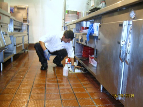 Restaurant cleaning service keeps your foodservice staff producing a quality product