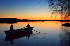 Rowing (Antti-Jussi Liikala) Tags: wedding sunset lake reflection tree water night evening fishing married may photograph rowing ht lapinlahti hkuva flickrstruereflection1