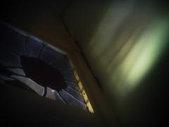 window (fervus) Tags: camera color digital lens toy mod quality fine ez fx vignette yashica takashi 5mp holgaesque 521 toydigital 12mp ezf521 f521