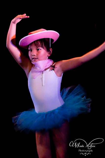 Ballet show 2011 120-2 blog