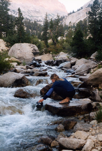 "Buzzy getting water on a fabulous Sierra evening, 2002, part of ""Two Trips..."" set"