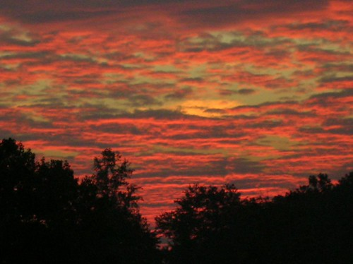Autumn morning sky October 2007