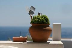 Goodmorning Mykonos - IMG_2069
