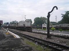 P1010104