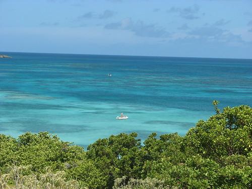 Isla de las Aves en Antigua