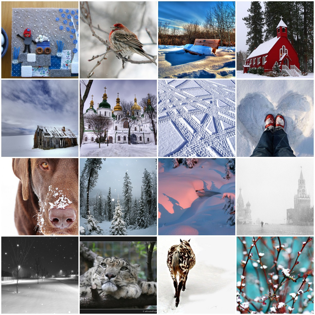 snow - images i like