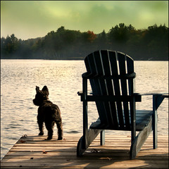It had that transformative effect we all crave (Maureen F.) Tags: lake ontario bravo muskoka tuffy adirondackchair muskokachair eow littlestories magicdonkey 35faves aplusphoto diamondclassphotographer megashot picswithsoul mastersoflifegallery dependsonwhereyoulivewhatyoucallthischair magicunicornverybest magicunicornmasterpiece mygearandmepremium mygearandmebronze
