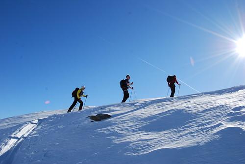 Skitouring Passo Tonale 2008