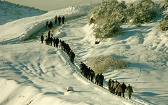 lets go to work / haydi ie gidelim (ozgurum) Tags: snow dzce mailciler