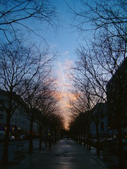 Avenue de Flandre 2 - Paris (Samyra Serin) Tags: street sky paris france tree car tag3 taggedout clouds alley europe tag2 contrail tag1 oneofakind gimp fv5 flickrversary fv10 75 2008 arbre iledefrance 75019 hp735 10faves twtme avenuedeflandre aplusphoto flickrhearts samyras freefr my1yearflickrversary samyraserin samyra008