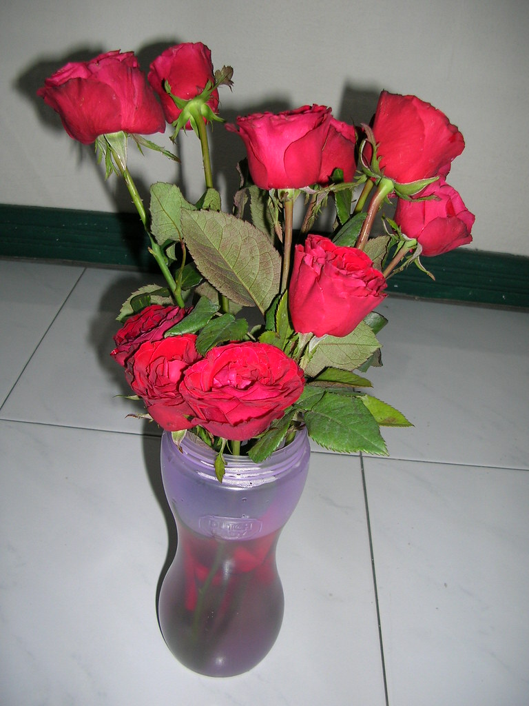 Roses from Bali