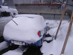 翌朝宿の駐車場で私のインプレッサは雪だるまになっていた(笑)
