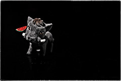 ... IMG_7391 (*melkor*) Tags: light art colours darkness experiment conceptual warthog onblack dreamjournal melkor trashbit modellingtoysproject