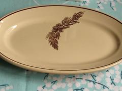 Pine Cone Platter (prima seadiva) Tags: vintage dish tan diner collection dishes restaurantware tanbody restaurantchina