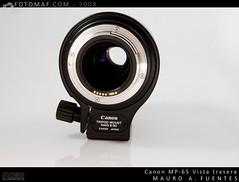 MP65-3