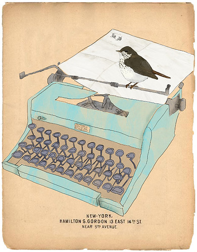 typewriter bird / Tabitha Patterson