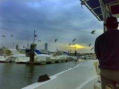 رحلة حداق (Suli_77) Tags: kuwait q8 الكويت سوق شرق kowait suli77 جن النورس سوقشرق يخوت