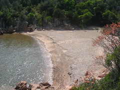 Sentier côtier Rondinara - Balistra : cala d'U Marescu et sa plage