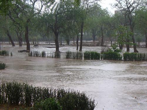 ... and more rain