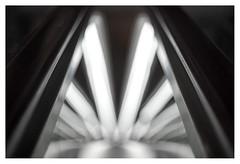 Escalator going down (leo.roos) Tags: escalator centraalstationdenhaag konicahexanon5218 a7s dayprime day52 dayprime2017 dyxum challenge prime primes lenzen brandpuntsafstand focallength fl darosa leoroos