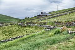 Irish Fence Friday (gabi-h) Tags: stonefence drystonefence fencefriday ireland gabih grass green lush verdant fields hills houses architecture