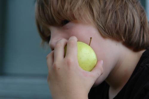 Apple Nosh