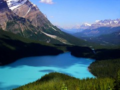 Peyto Lake, Canadian Rockies (EOSXTi) Tags: lake canada mountains landscape rocky peyto platinumphoto anawesomeshot colorphotoaward naturewatcher theperfectphotographer absolutelystunningscapes 100commentgroup