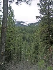 Mission Ridge / Peak