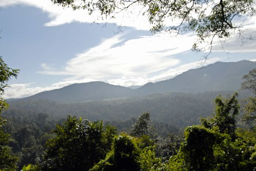 Sabarimala Hills